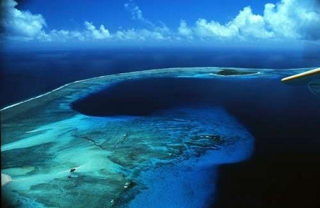 اكتشف روعة الفلبين من تحت الماء