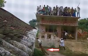 بالفيديو..  نمر بري يقتحم قريةً هنديّةً ويُطارد السّكان وينقضّ على من يحاول ضربه!