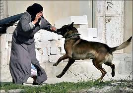 """بالفيديو .. الجيش الاسرائيلي يدرب الكلاب على مهاجمة من ينادي """"الله أكبر"""""""