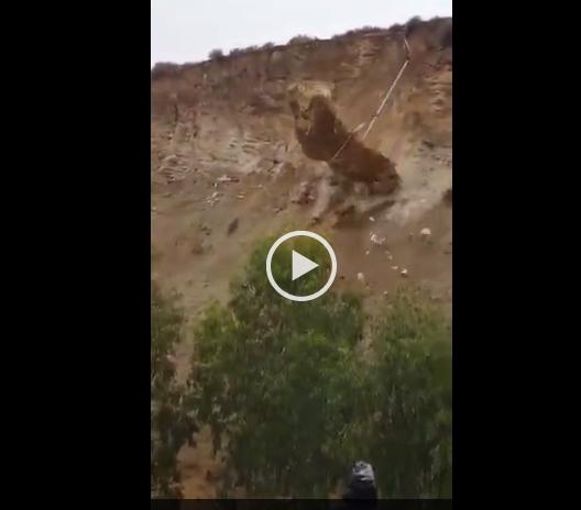 بالفيديو ..  اعادة فتح طريق جرش - اربد بالاتجاهين بعد الانتهاء من ازالة الصخور الترابية