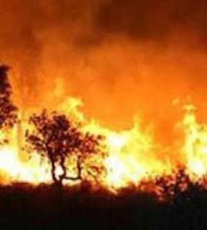 حريق هائل بالاف الدونمات بطوباس نتيجة تدريبات اسرائيلية